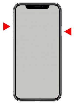 サイドボタンと音量(上)でスクリーンショットを撮る