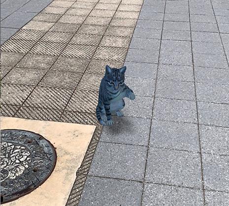Google検索AR動物「ネコ」
